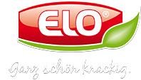 Elo_2
